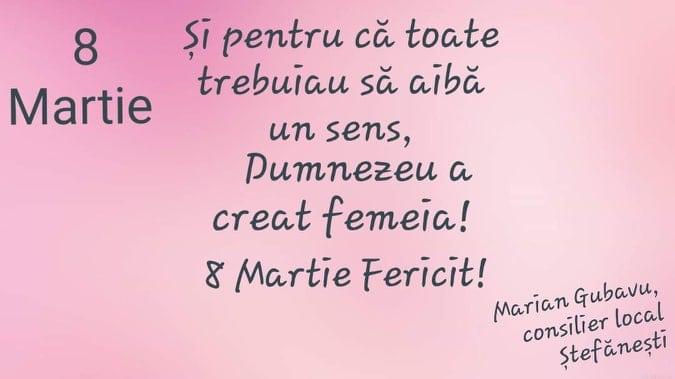 Felicitare - Marian Gubavu, consilier local Ștefănești 1