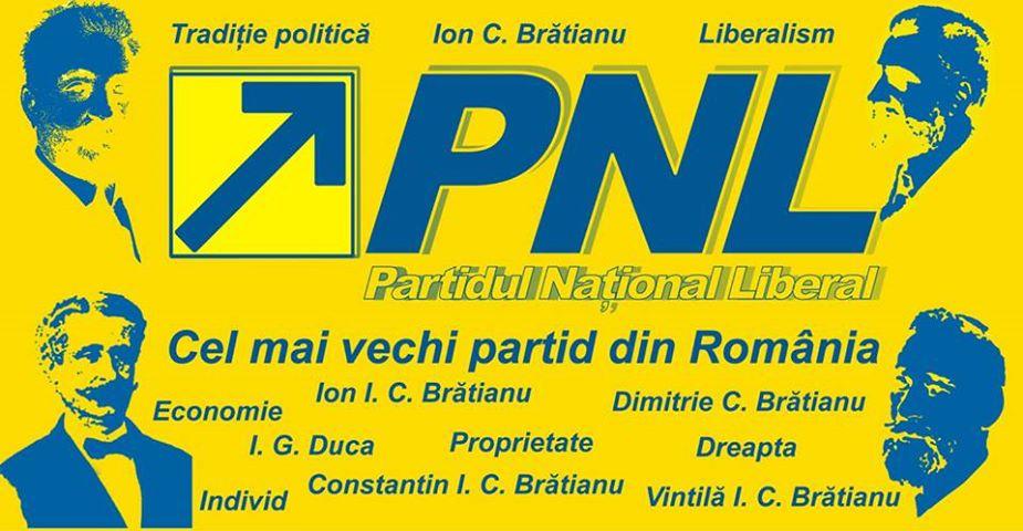 pnl138deani1 b8978