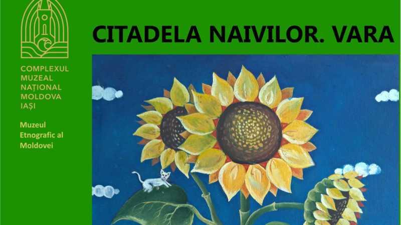 citadela-naivilor-vara