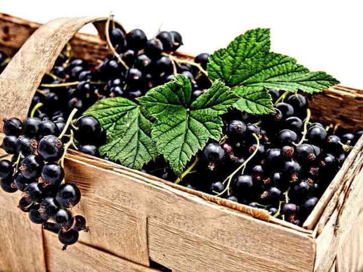vitamina-c-remedii-raceala