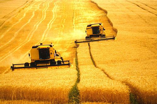 Imagem: outraspalavras.net