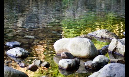 """Inocencia y naturaleza truncadas. """"El río baja sucio"""", de David Trueba"""