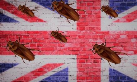 Vivir en una isla. «La cucaracha», de Ian McEwan