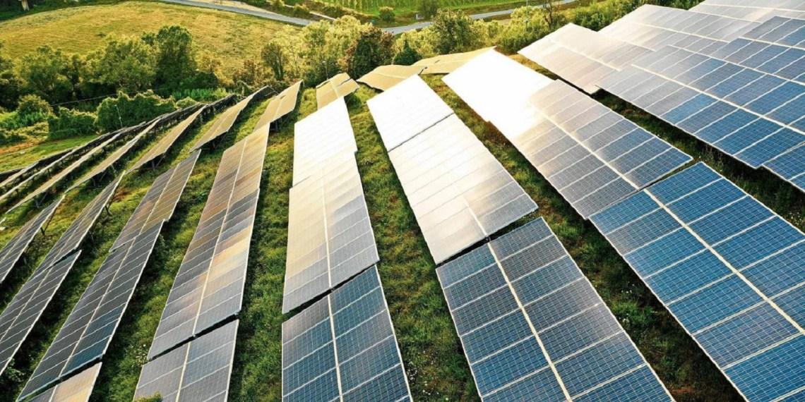 Profarma garante energia solar para lojas da d1000