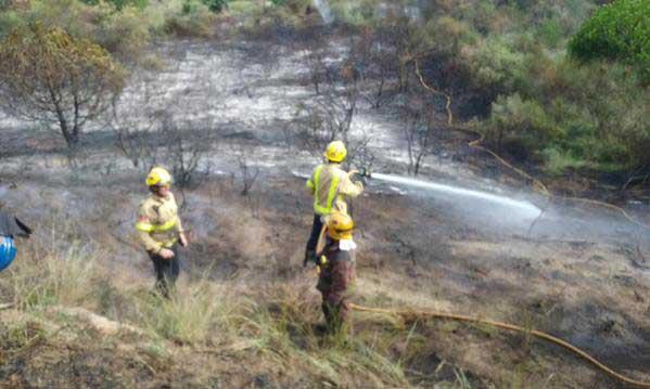 Agentes forestales colaborando en la extinción del incendio