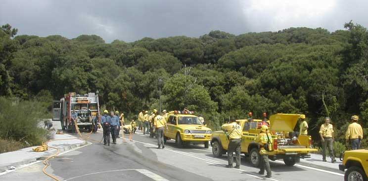 Las ADF del territorio son uno de los puntales de la lucha antincendios. Foto: CCM