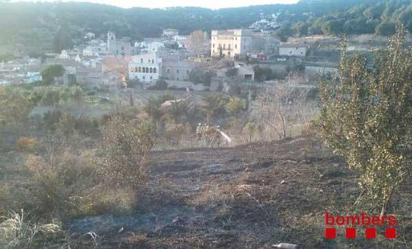 Aspecto de la zona afectada por el fuego
