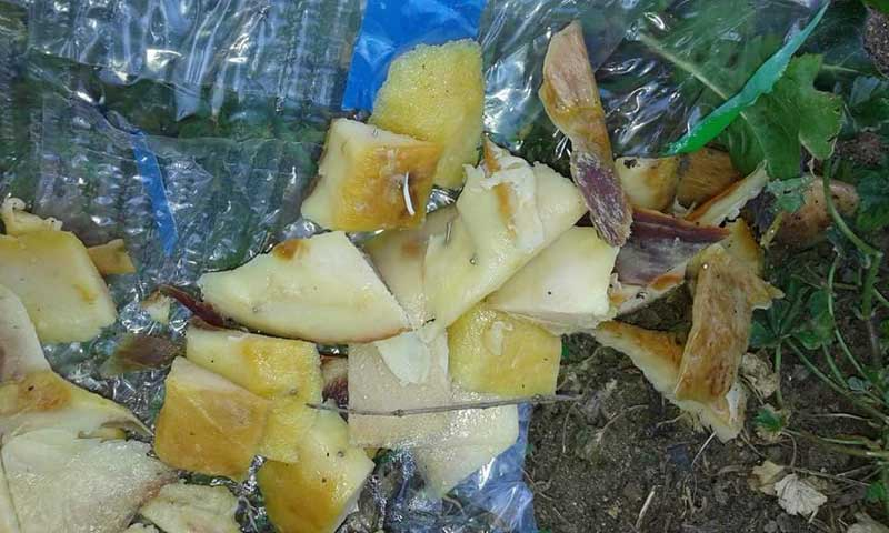Los trozos de jamón con alfileres incrustados. Foto:@Cerdanyolabarri