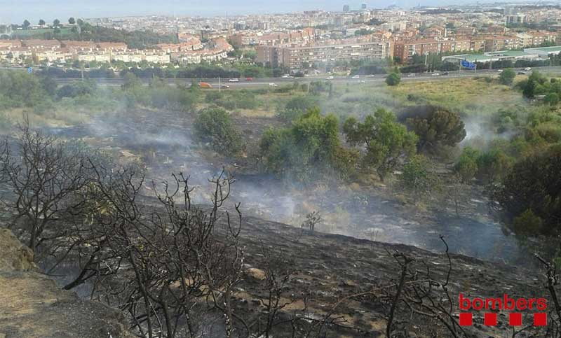 Aspecto de la zona quemada