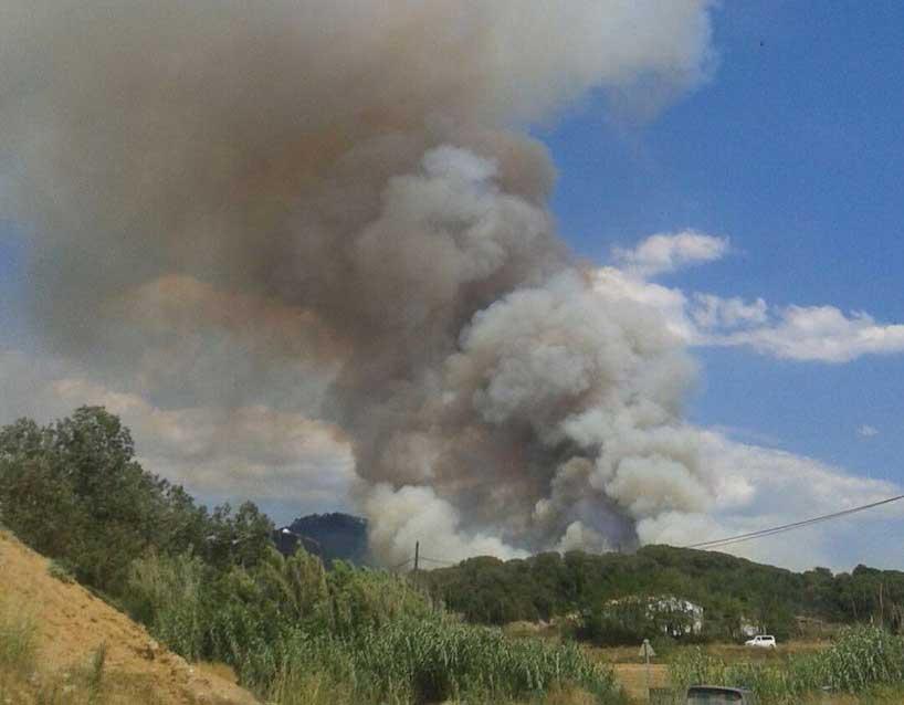 El incendio ha quemado más de 20 hectáreas de monte