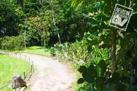 Parque Jardín La Laguna