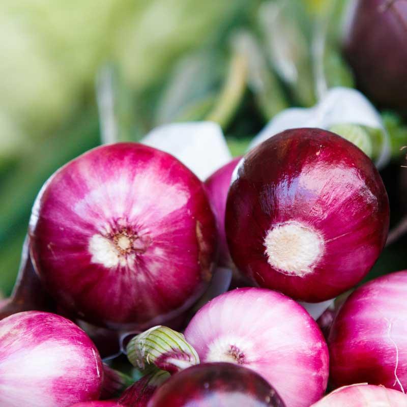 analgésicos naturales, cebolla morada