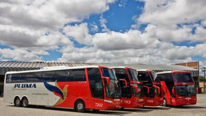 Justiça decreta falência da Pluma no Paraná