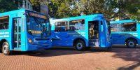 Foz do Iguaçu renova frota com 15 novos ônibus com ar condicionado