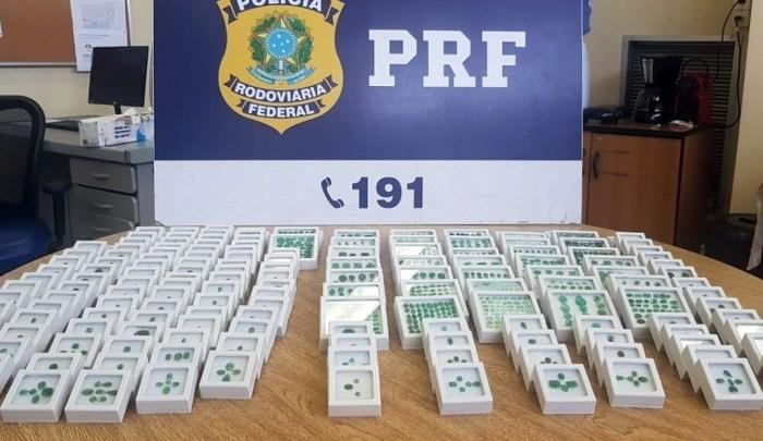 PRF apreende carga de esmeraldas avaliadas em R$ 1 milhão em ônibus durante fiscalização na Via Dutra