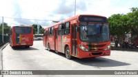 Grande Recife registrou em maio 196 assaltos em ônibus