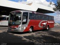 Ônibus da Expresso Gardenia pega fogo na BR-265 em Lavras