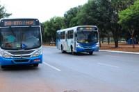 Palmas terá redução de 10% da frota de ônibus neste mês de julho