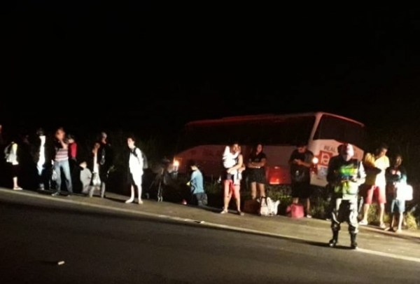 Ônibus da Real Alagoas perde controle e invade canavial em Alagoas