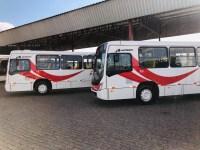 MG: Viação Formiga adquire quatro novos ônibus Torino