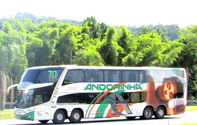 Viação Andorinha lota ônibus no trecho Campo Grande x Rio