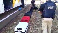Jovem é presa com drogas em ônibus da Viação Motta que seguia para Cuiabá