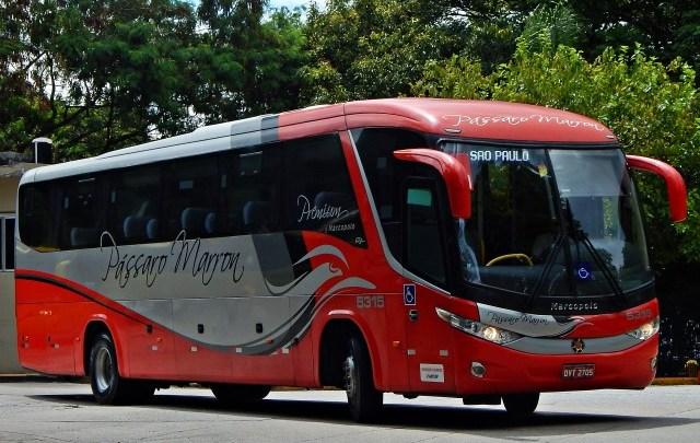 Pássaro Marrom e Cometa seguem com ônibus vazios na SP x Aparecida