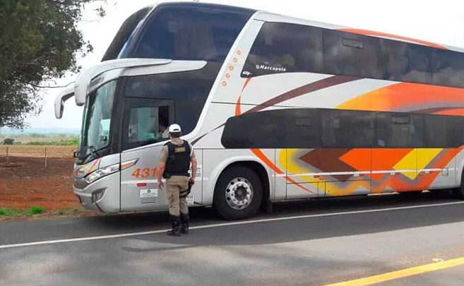MG: PMV realiza operação de  de combate ao transporte irregular na BR-146