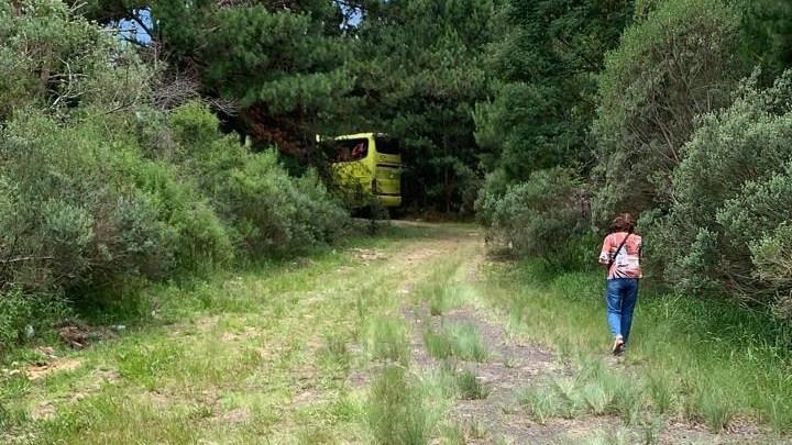 SC: Duas pessoas acabaram baleadas em assalto a ônibus na BR-153