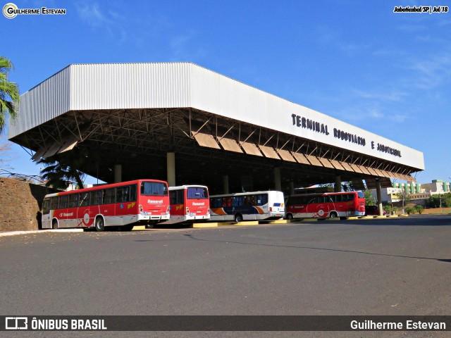 SP: Prefeitura de Jaboticabal anuncia ônibus com tarifa zero