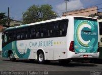 BA: Ônibus da Camurugipe cai em ribanceira e deixa feridos na BR-420
