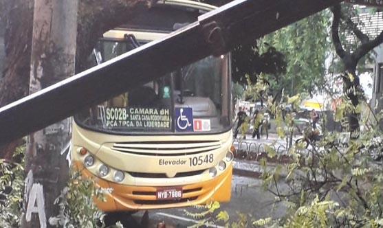 Durante chuva em Belo Horizonte árvore cai sobre ônibus em avenida da Savassi