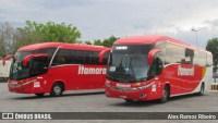 SP: Expresso Itamarati segue com ônibus cheios nos finais de semana em Aparecida