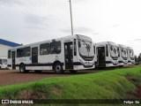 Princesa do Norte renova parte de sua frota com ônibus Mascarello