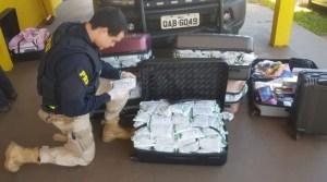 MS: Passageiro de ônibus acaba preso com 100 kg de agrotóxicos durante fiscalização da PRF na BR-163