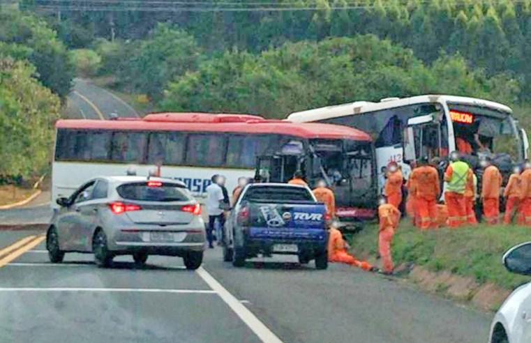 SP: Acidente envolvendo dois ônibus deixa 15 feridos na rodovia SP-261