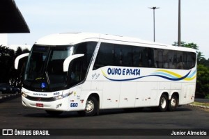 MT: PRF apreende entorpecente em dois ônibus em Rondonópolis