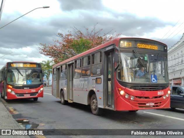 Juiz de Fora terá aumento de linhas de ônibus a partir de segunda-feira