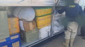 GO: PRF apreende ônibus com mercadoria irregular na BR-040