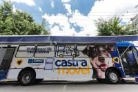 SP: Itapevi realiza cadastro on line do serviço Castramóvel