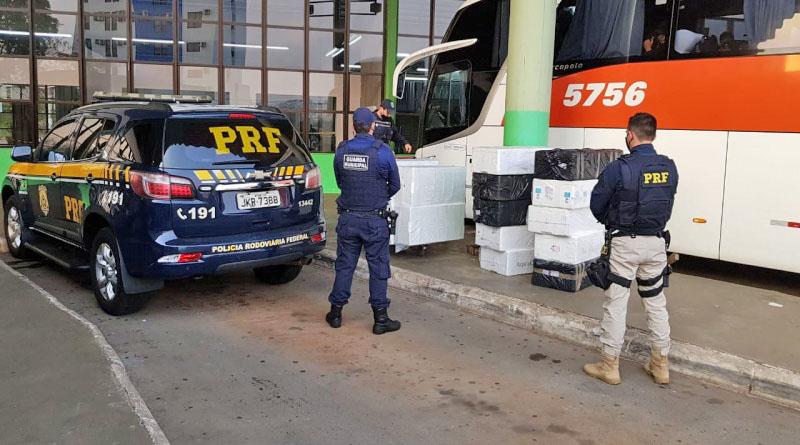Vídeo: PRF apreende 350 kg de pescados em ônibus da Unesul na BR-480 em Chapecó