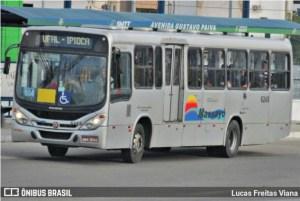 Maceió: TJ condena Auto Viação Massayó a pagar R$ 10 mil por danos estéticos à mulher atropelada por ônibus