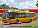 Ônibus circularão com 100% da frota em Boa Vista neste domingo de eleições