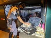 SP: Passageira de ônibus é presa em fiscalização na Rodovia Raposo Tavares com 11 kg de skank