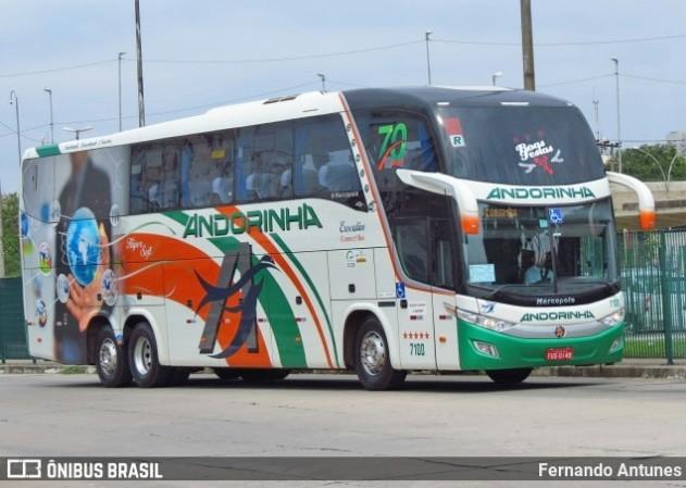 SP: Polícia Rodoviária apreende passageira de ônibus com entorpecentes em fiscalização na Raposo Tavares