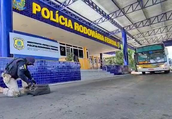 Vídeo: PRF prende passageiro de ônibus com 14 mil comprimidos de ecstasy na Bahia