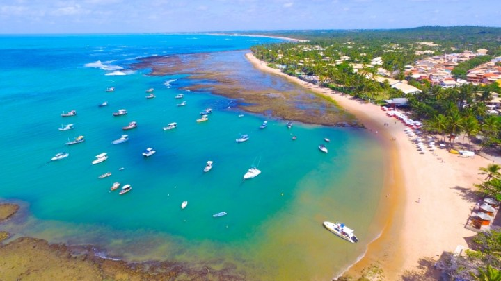 BA: Mata de São João proíbe a entrada de carros, vans e ônibus de turismo na Praia do Forte