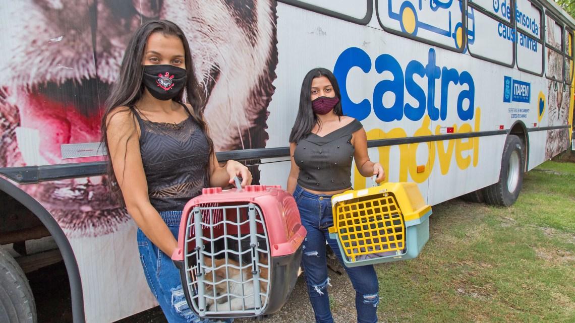 SP: Prefeitura de Itapevi  inicia 2ª etapa da Campanha de Castração Gratuita para cães e gatos