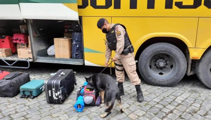 MG: Operação Viagem Segura da PM fiscaliza ônibus em Realeza neste fim de semana