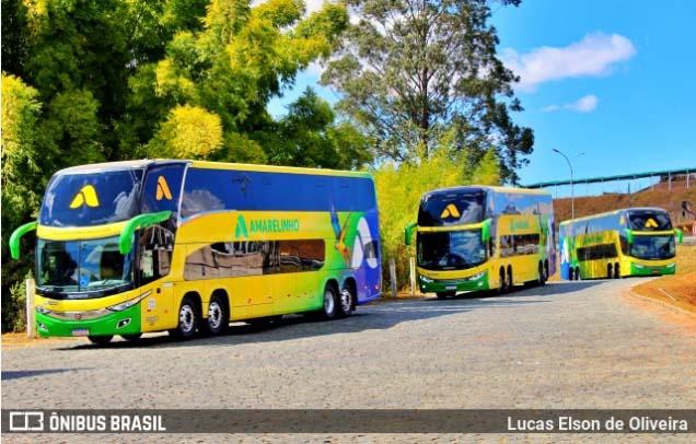 Brasília: ANTT suspende a venda de passagens pela Viação Amarelinho, após ministro do TCU apontar fraude – Vídeo
